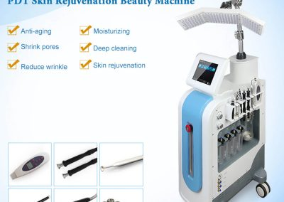 Salon Use PDT Skin Rejuvenation Beauty Machine LB054